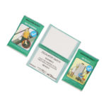 Plastic-Wallet-Tissue-Pack-26